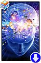 Шон де Уоррен «Открытие себя. Введение в самосознание»